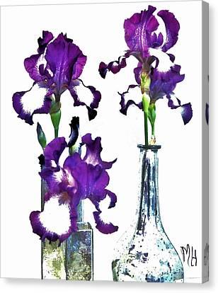 Three Irises In Vases Canvas Print