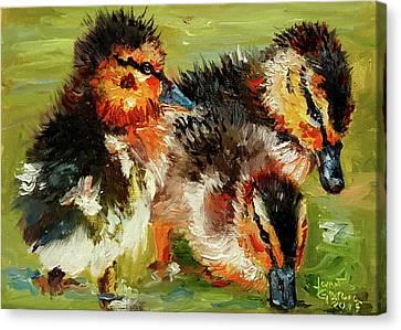 Three Little Ducks Canvas Print
