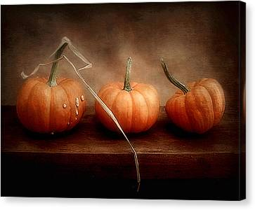 Three Little Pumpkins Canvas Print