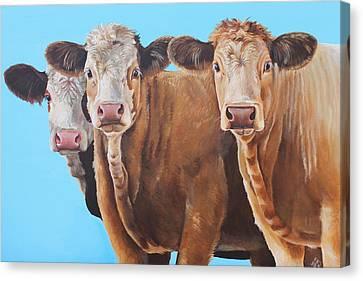 Three Moosketeers Canvas Print by Laura Carey