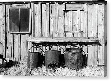 Three Old Buckets Canvas Print
