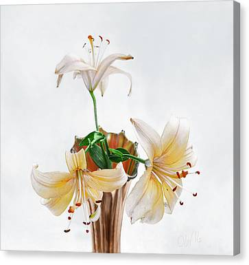 Three Pale Gold Lilies Still Life Canvas Print