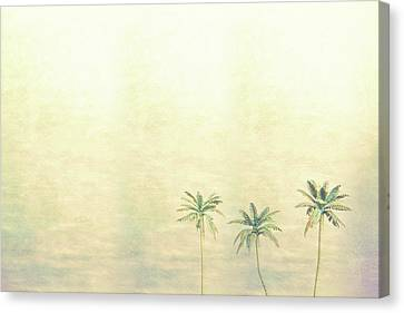 Three Palms In Color Canvas Print