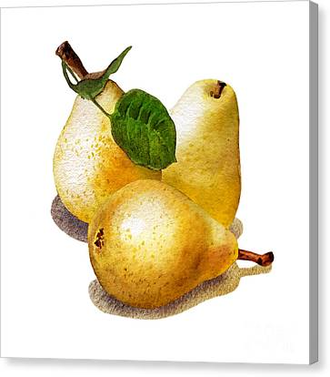 Three Pears Canvas Print by Irina Sztukowski