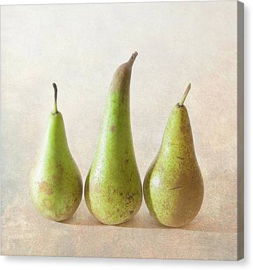 Cheshire Canvas Print - Three Pears by Peter Chadwick LRPS