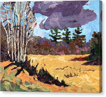 Three Canvas Print by Phil Chadwick