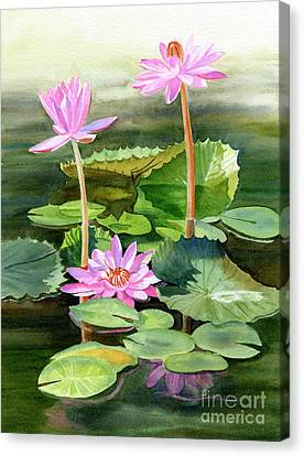 Three Pink Water Lilies With Pads Canvas Print by Sharon Freeman