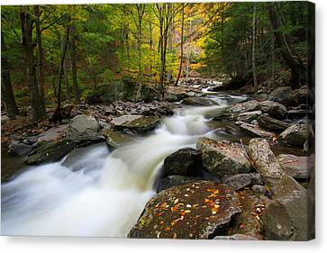 Three Seconds In Fall Canvas Print