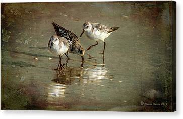Three Together Canvas Print by Marvin Spates