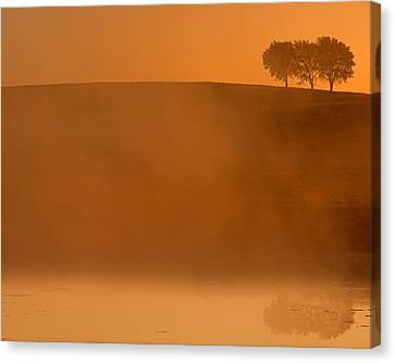 Three Trees  Canvas Print by Don Spenner
