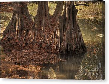 Canvas Print featuring the photograph Three Trees In Lake Murray by Tamyra Ayles