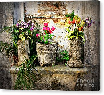 Three Vases Canvas Print by Perry Webster