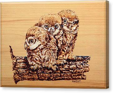 Three's Company Canvas Print by Ron Haist