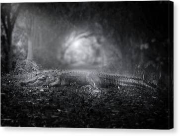 Throne Of The Swamp King Canvas Print