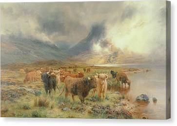 Cow Canvas Print - Through Glencoe by Louis Bosworth Hurt