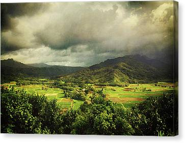 Through It All Canvas Print by Laurie Search