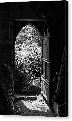 Through The Door Canvas Print by Clare Bambers