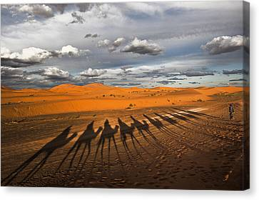 Morocco Canvas Print - Through The Dunes Of Merzouga (morocco). by Joxe Inazio Kuesta Garmendia