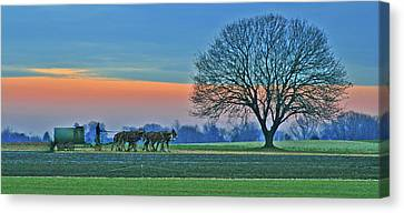 Through The Fields Canvas Print