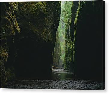 Through The River Canvas Print