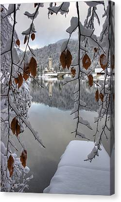 Canvas Print featuring the photograph Through The Snow Trees by Ian Middleton