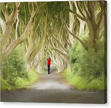Canvas Print featuring the photograph Through The Trees by Roy  McPeak