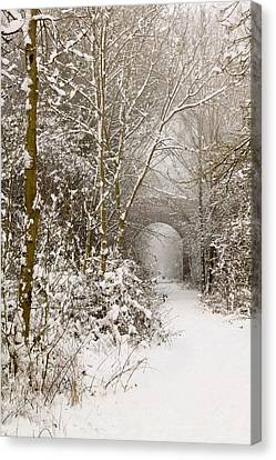Through The Trees Through The Snow Canvas Print