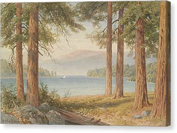 Through The Trees, United Kingdom, By Sutton Palmer. Canvas Print by Celestial Images