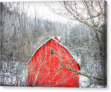 Canvas Print featuring the photograph Through The Woods by Julie Hamilton