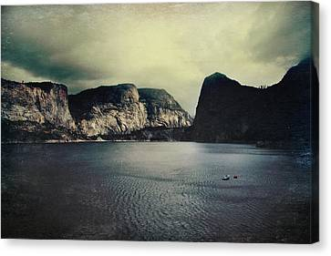 Through Thick Or Thin Canvas Print by Laurie Search