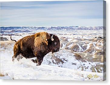 Thunder In The Snow Canvas Print