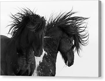 Thunderheart Canvas Print