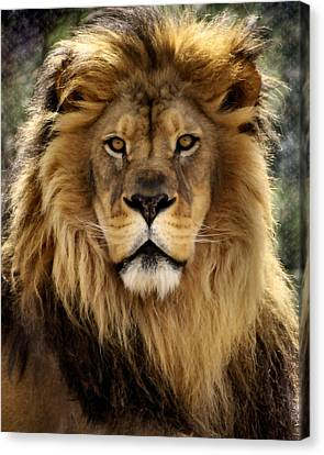 Lion Canvas Print - Thy Kingdom Come by Linda Mishler