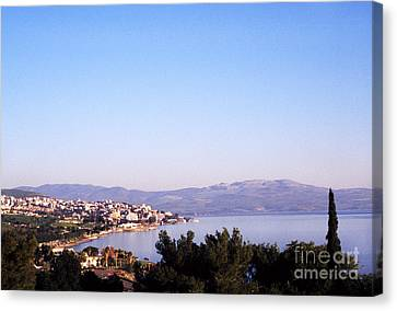 Tiberias Sea Of Galilee Israel Canvas Print by Thomas R Fletcher