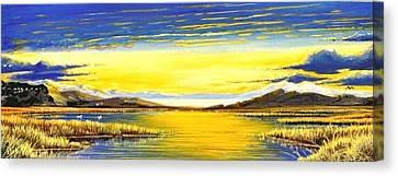 Tidal Lands Canvas Print by Bob Patterson