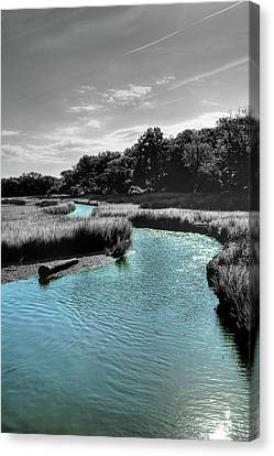 Tidal Marsh Canvas Print by Drew Castelhano