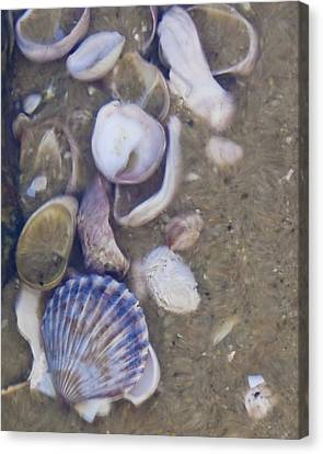 Tidal Pool - Brant Point - Nantucket Canvas Print by Henry Krauzyk