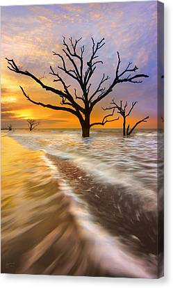 Tidal Trees - Craigbill.com - Open Edition Canvas Print by Craig Bill