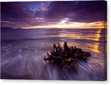 Tide Driven Canvas Print by Mike  Dawson