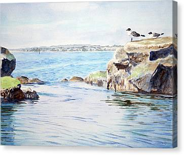 Tidepool With Terns Canvas Print