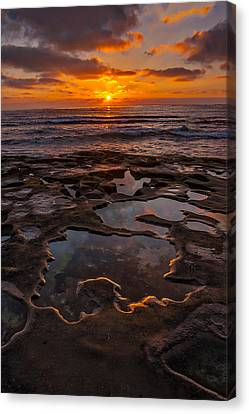 Tidepools At La Jolla Canvas Print