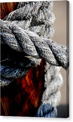 Ropes Canvas Print - Tied Together by Susanne Van Hulst