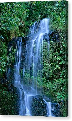 Tiered Waterfall Canvas Print by Bill Brennan - Printscapes