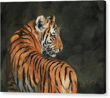 Canvas Print featuring the painting Tiger At Night by David Stribbling