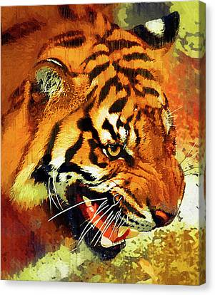 Growling Canvas Print - Tiger At Waterhole by Clarence Alford