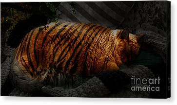 Tiger Dreams Canvas Print by Kathi Shotwell
