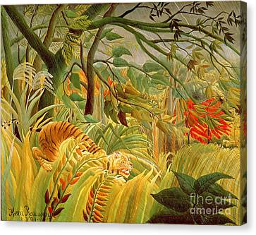 Tiger In A Tropical Storm Canvas Print