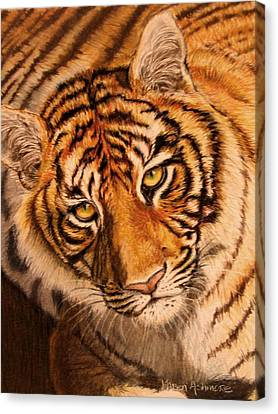 Canvas Print featuring the drawing Tiger by Karen Ilari