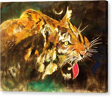 Tiger Canvas Print by Khalid Saeed