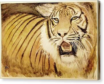 Tiger King Canvas Print
